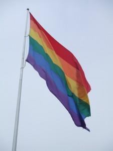 虹色は多様性