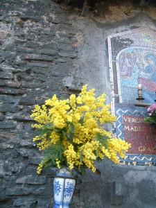 写真3枚は、2006年3月8日、ローマにて筆者写す